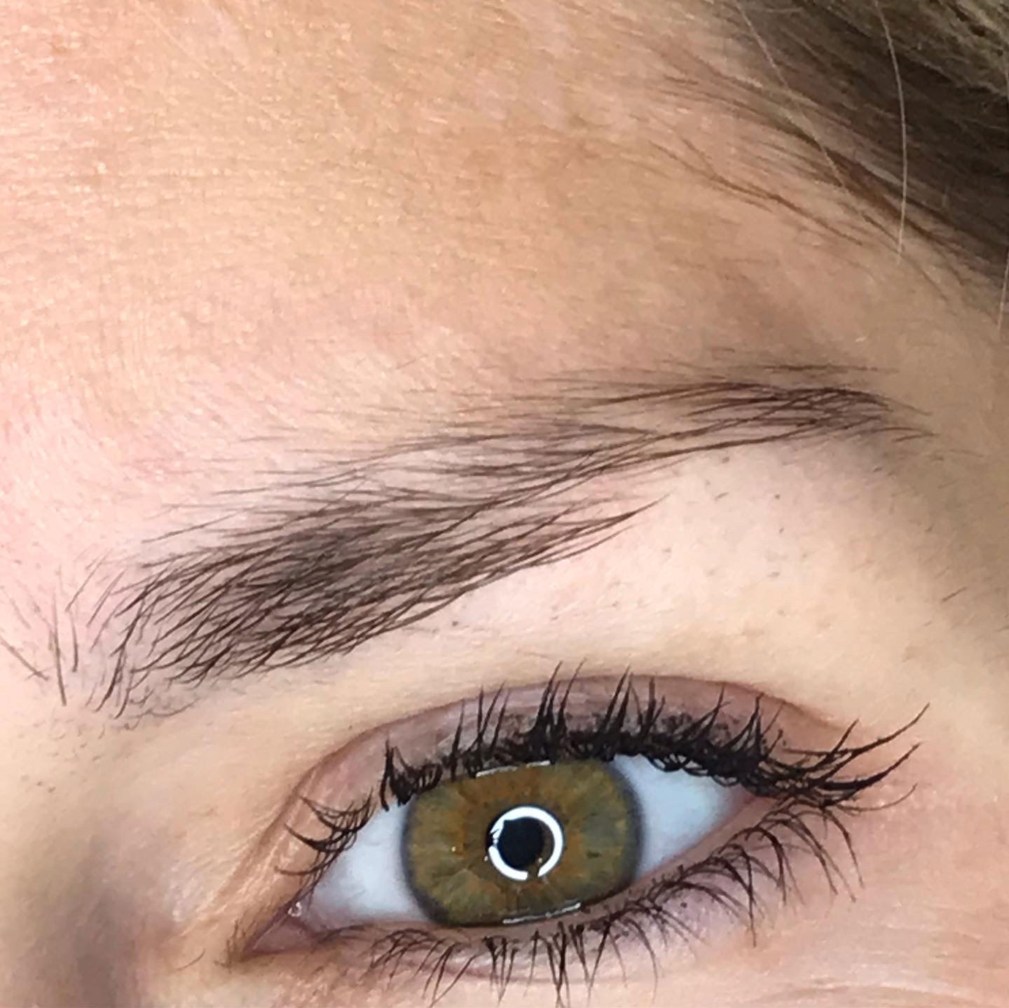 brows-before