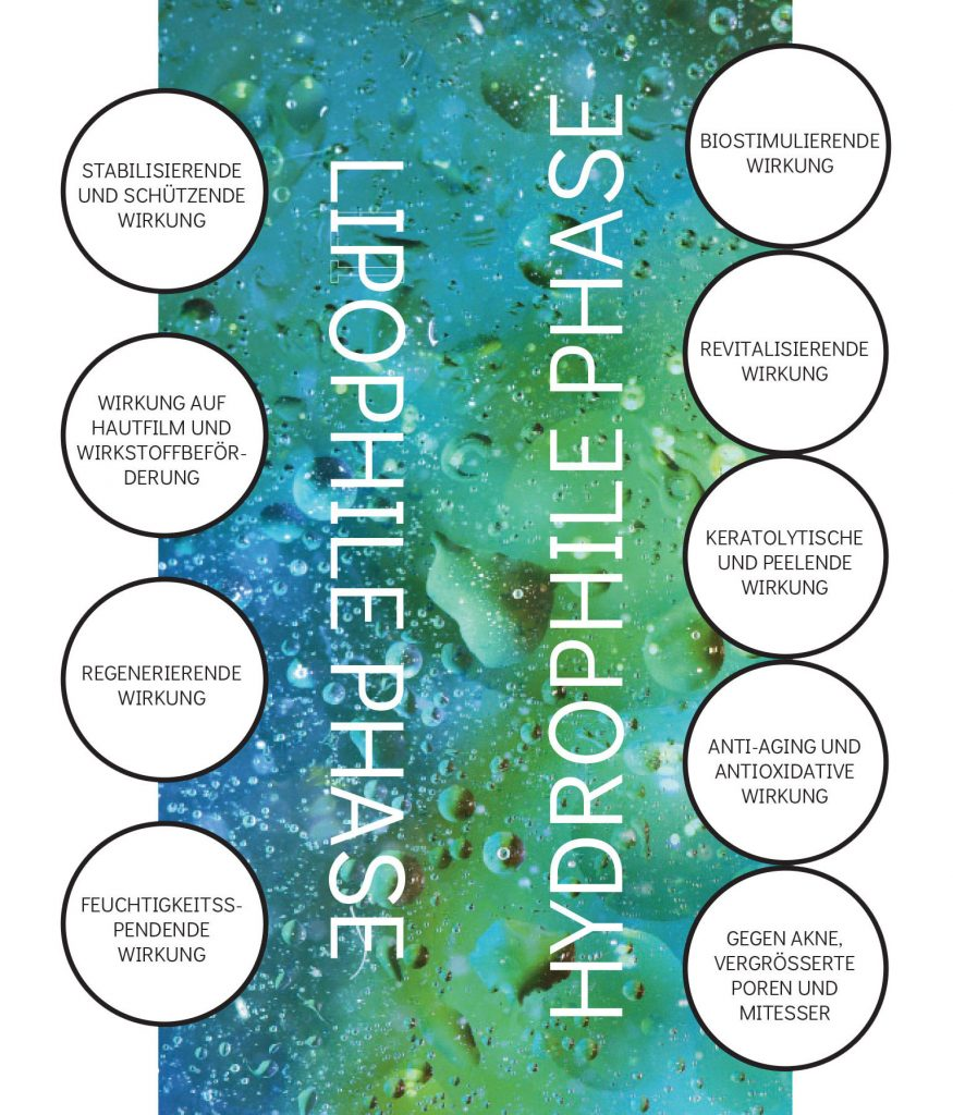 LIPOPHILE-HYDROPHILE-PHASES